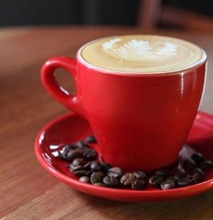 54ee52940743b_-_latte-xln