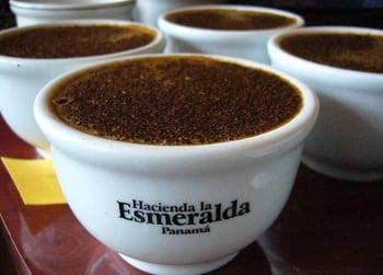 Panama_Esmeralda_3rd
