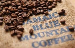blue_mountain_coffee_jamaican_blue_mountain_coffee_jamaican_coffee_blue_mountain_coffee_beans_large